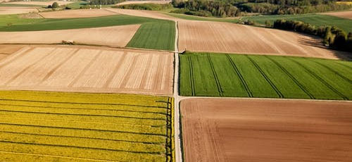 Featured image Topics Frequently Discussed at Agriculture Conferences Horticulture Crops - Topics Frequently Discussed at Agriculture Conferences